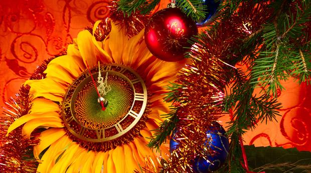 Ритуалы нового года на деньги