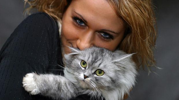 домашние ыотограыии девушек с кошками диван ортопедическим